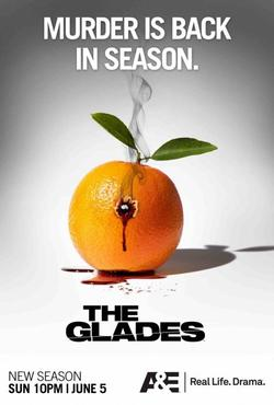 The-Glades-Fic