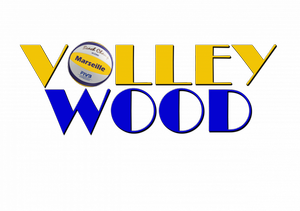 VOLLEYWOOD W133026498