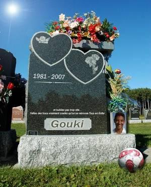 LE Testament de GOUKI® ✟ :(