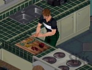 Simulation Game – Sims 3