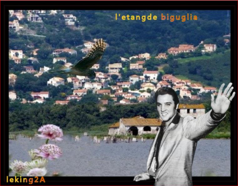 MAGNIFIQUES KDOS DE MON AMI GABRIEL (LEKING2A) MERCI GROS BISOUS BICHEDU54