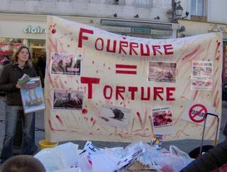 Anti fourrure  (passer voir ce blog http://animal-liberation888.skyrock.com/)