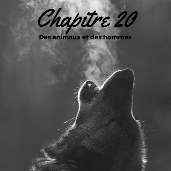 Saison 1 - Chapitre 20 : Des animaux et des hommes