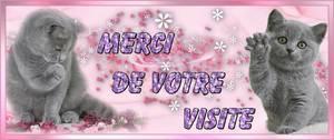 bienvenue sur mon blog et bonne visite merci a vous tous