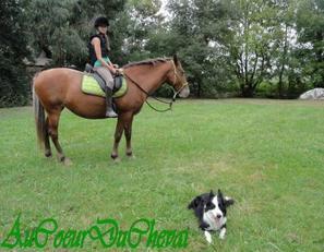 Super Balade avec Océa et ma chienne !!! ;D