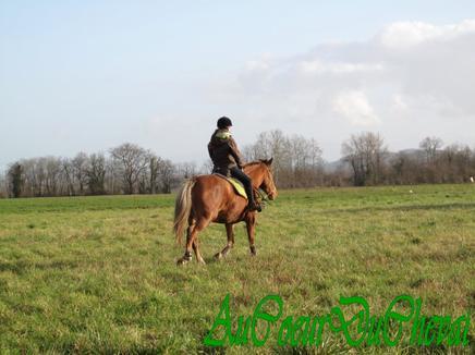 Balade du 04/01/2012