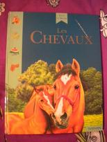 Lire sur les chevaux