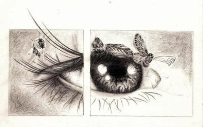 (496) - Eleven Eyes