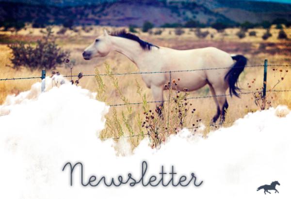 La Newsletter ;