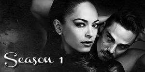 Liste des épisodes  saison 1
