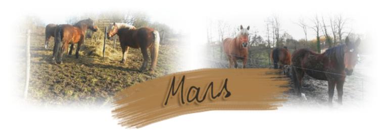 Mars 2015.