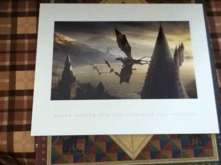 Article #6 Photos Wizards Collection
