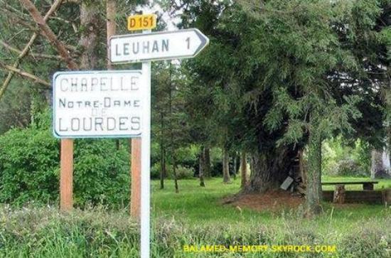 INFOS-INSOLITE : Des touristes ont trop fait confiance à leur GPS. Alors qu'elles voulaient découvrir Lourdes