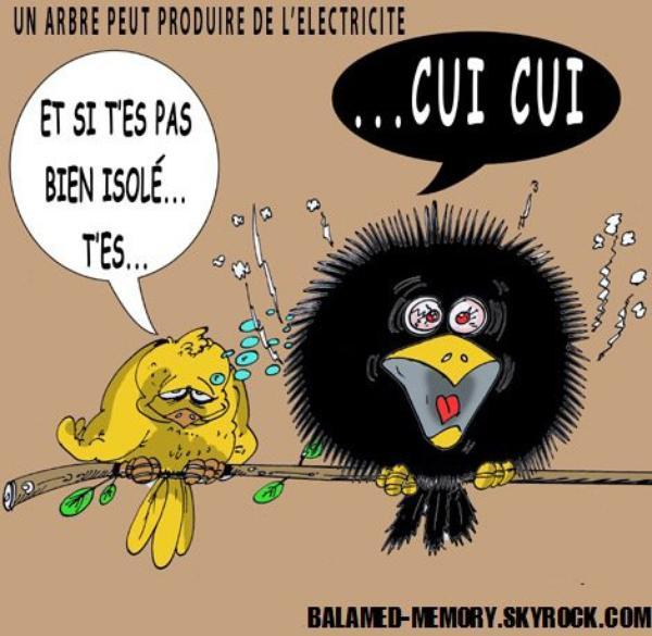 BLAGUE DE LA SEMAINE : Quel est le comble de l'électricien