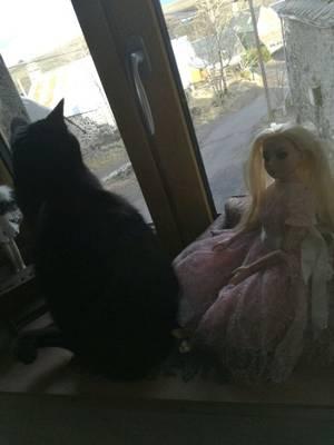 Et pourquoi pas cette jolie robe de dentelle rose....dis ...Cachou...