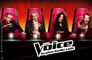 The Voice ~ La plus belle voie
