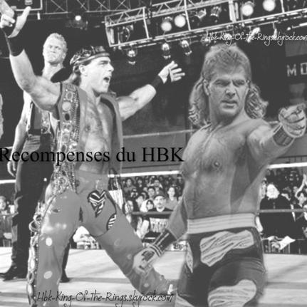 les Récompenses remporter par Shawn Michaels !( Crea fait par moi :)