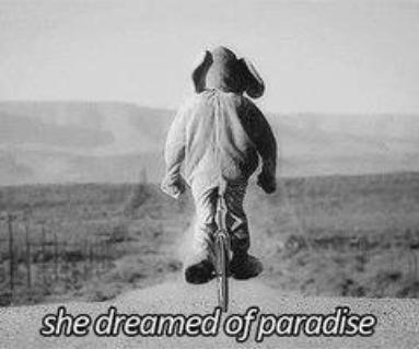 Tout commence par un rêve