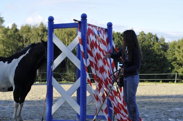 Le petit exploit de mon Magic Pony : passage étroit avec la rubalise!