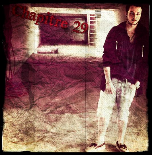 Chapitre 29.