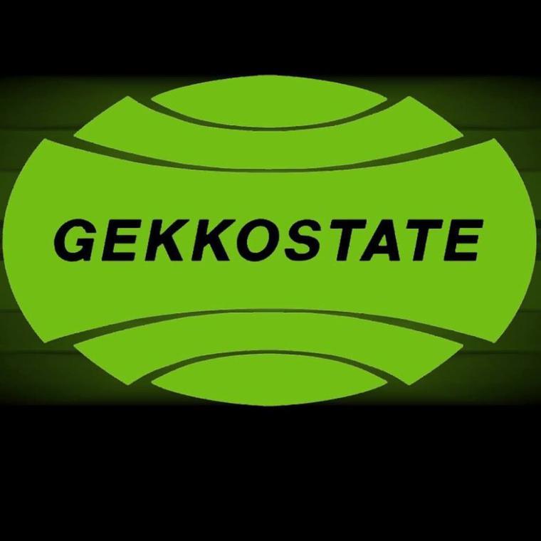 Dj Flash - GEKKOSTATE version 2015_Evolution 2 (2015)