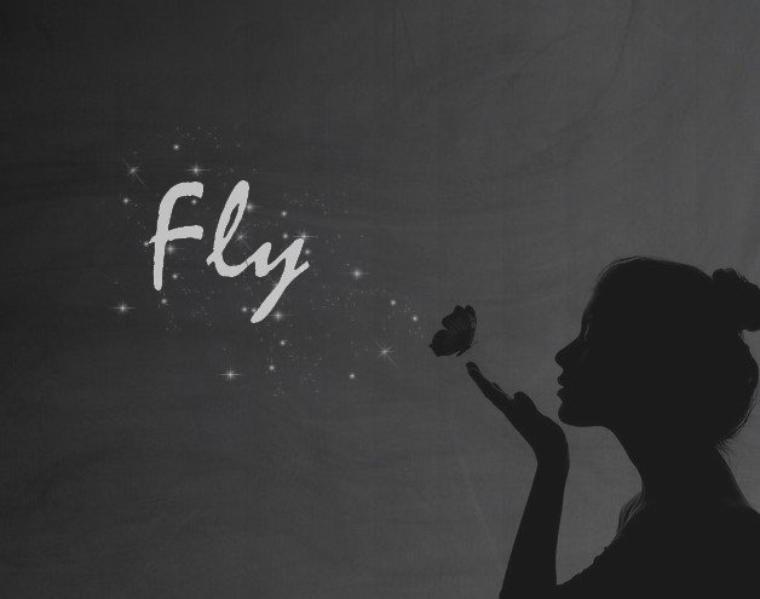 Fly-fiction