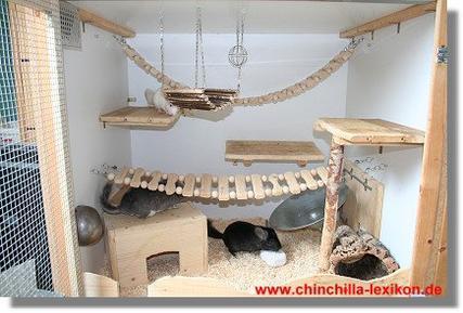 Fabriquer une cage pour chinchilla