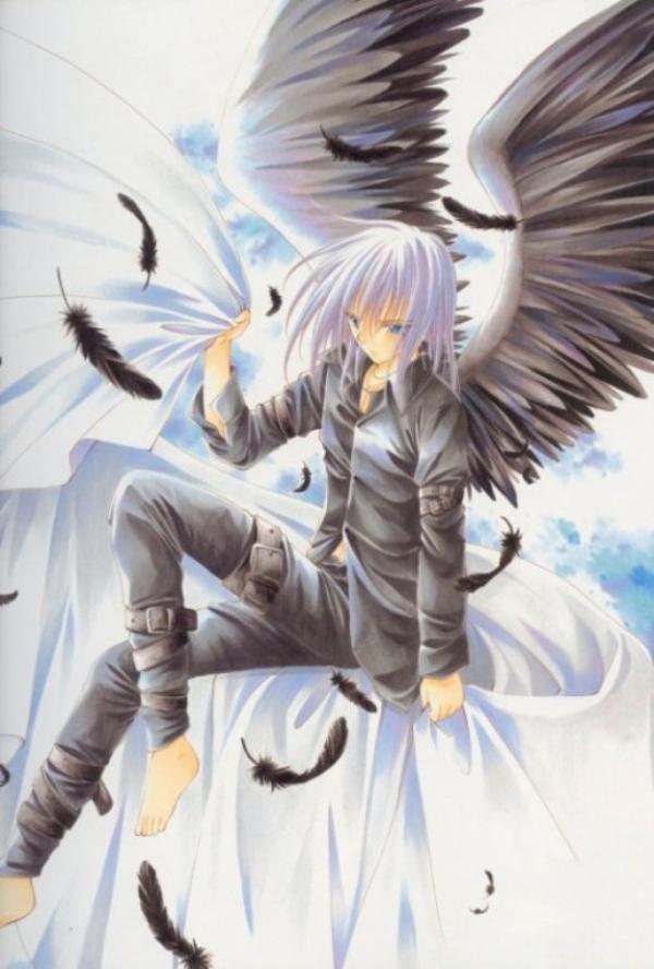 ange gris