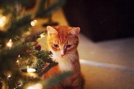 Joyeux Noël 2016 ! 🎉🎄
