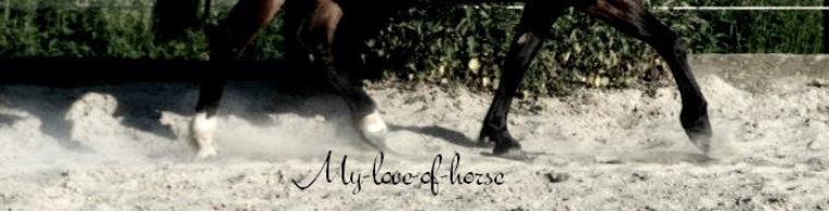 Chaque cheval à son passé, chaque couple à son histoire, voici la notre ...