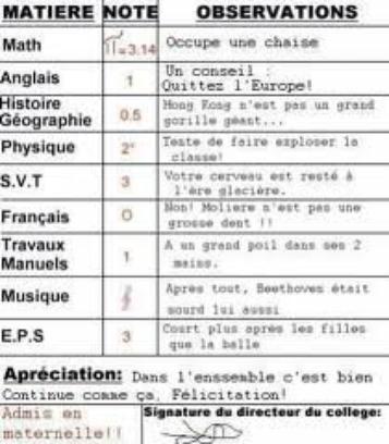 Mon excellent bulletin scolaire x)
