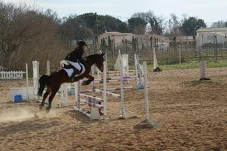 L'équitation est le seul sport individuel qui ce pratique à deux.