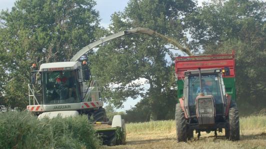 Ensilage de mélange le Mardi 31 Mai 2011 (a la ferme) ...