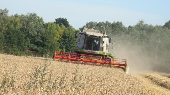 Moisson de blé le Dimanche 3 Juillet 2011 ...