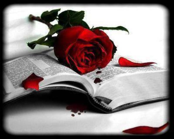 l'amour (article mis par celine)