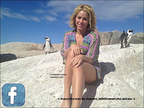 🌴 Shakira a été vue sur une « Plage ».  11-12 Février 2012 - Afrique du Sud.