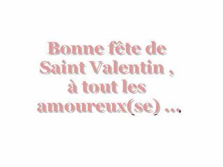 Je souhaite une bonne Saint Valentin , à tout les petits couples .