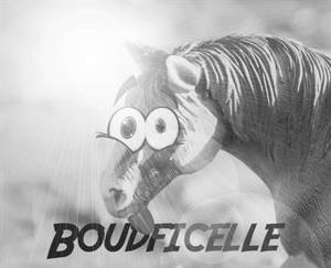 Boudficelle