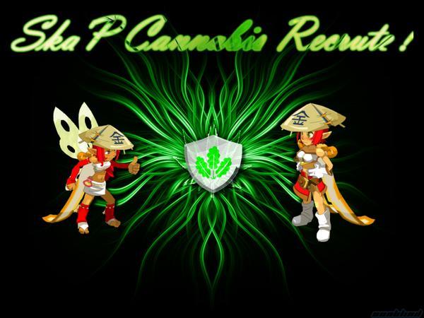 Ouverture des portes pour la Ska'P Cannabis !