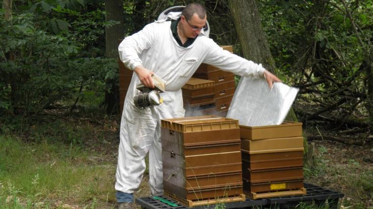 Quelques images du métier d'apiculteur lors d'une visite de contrôle des ruches
