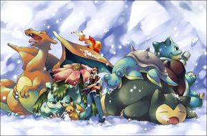 Les concours Pokémon