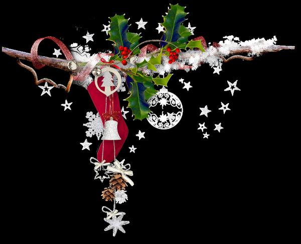 Annick, avec ce petit cadeau, je viens te souhaiter un bon et Joyeux Noel en famille ... mille bisous du (l) Josie