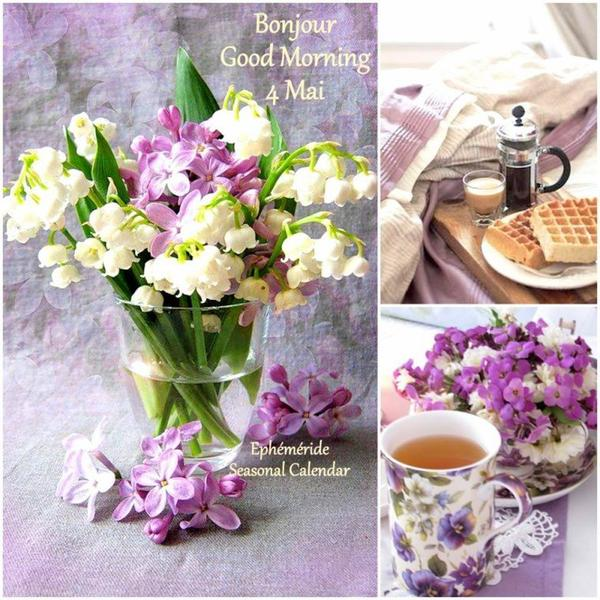 bonjour mes amis(e)s.. je vous souhaite un très bon appétit .. et un agréable après midi de jeudi, ici avec encore de la  pluie !!!!!!  .. bisous Josie