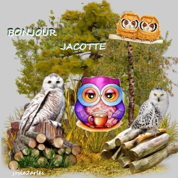 Cadeau pour mon amie Jacotte .... Bisous Josie