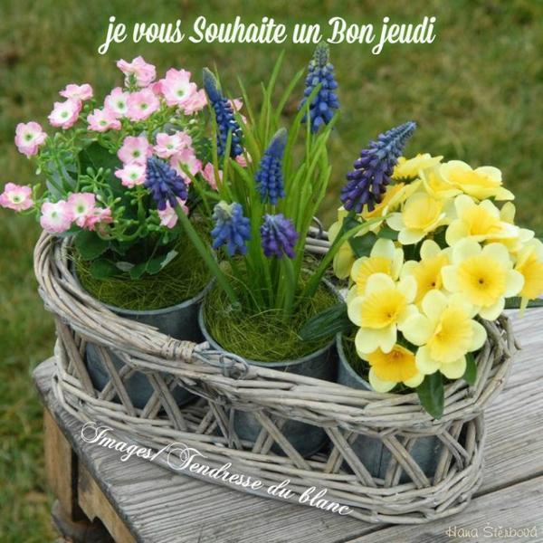 bonjour mes amis(es) .. je vous souhaite un excellent appétit, et un bon après midi de jeudi, ici avec soleil et vent .. bisous Josie