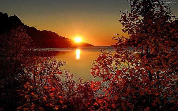 que la nuit  vous soit  douce   ........ pour vous aider a faire de beaux reves ..