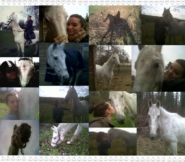 Juanito. Mon cheval, mon amour.