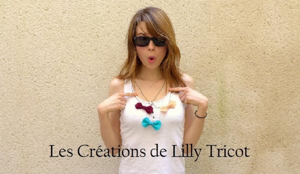 Les Créations de Lilly Tricot