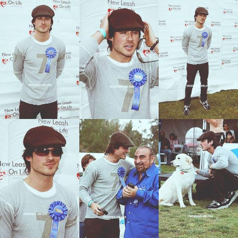 "Ian au ""Nuts For Mutts"". 