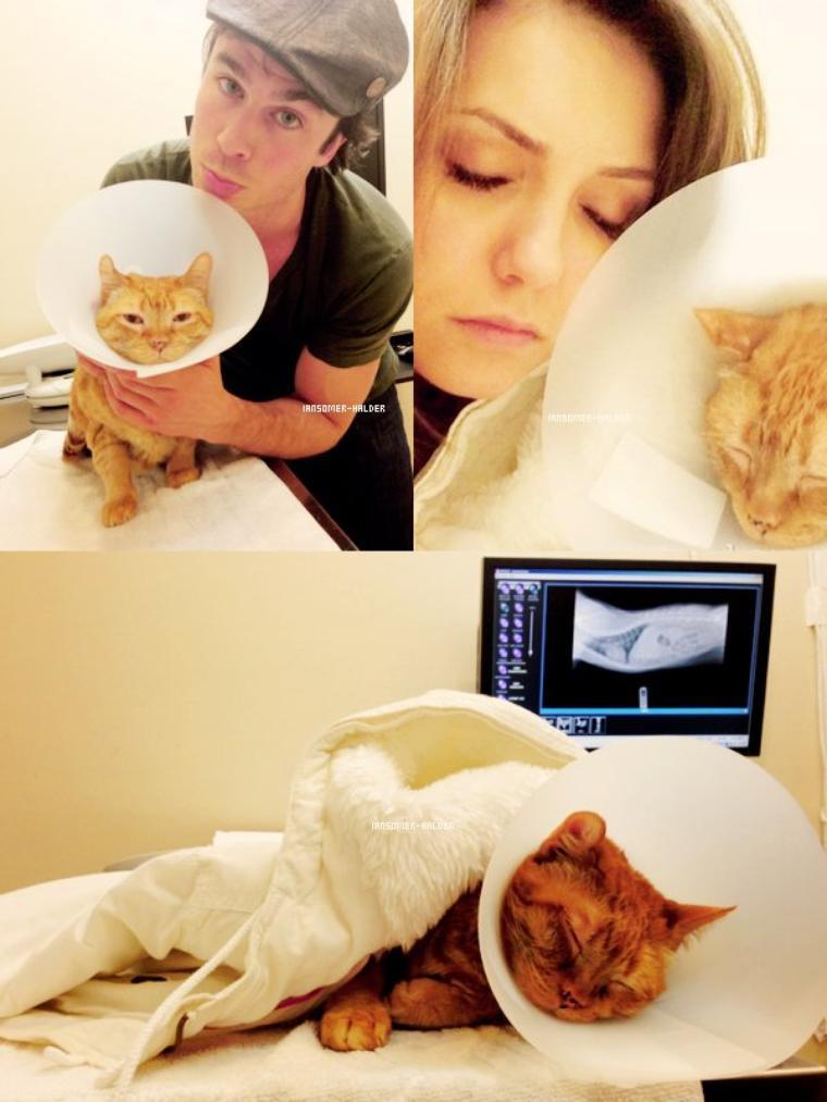 Ian et Nina chez le véterinaire avec leur chat Moke qui se sentais pas bien. | Le 10 avril 2013.